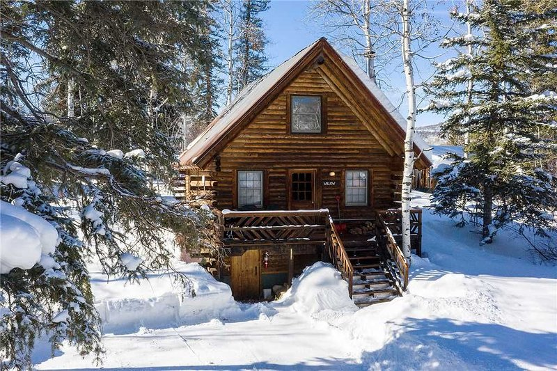 CABWI by Pioneer Ridge: Rustic Colorado Cabin! Enjoy a unique stay by Buff Pass!, holiday rental in Clark