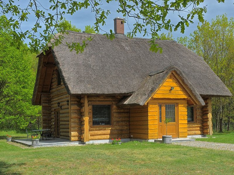 DOM    POD   SOSNAMI, holiday rental in Lubrza