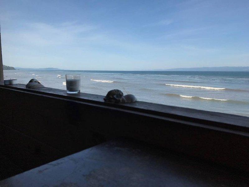 Beach Front Cabin Getaway Olympic Peninsula CC, aluguéis de temporada em Joyce