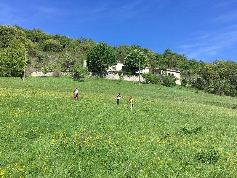 belle ferme rénovée avec vue splendide, vacation rental in Chabeuil