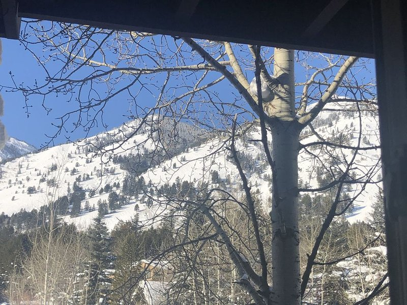 SLOPESIDE CONDO 2BR/1BA-10 MIN WALK OR FREE RIDE TO LIFTS-TETON VIEW-LOCATION!!!, holiday rental in Jackson