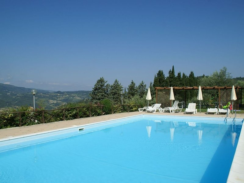 Attractive apartment in vineyard with swimming pool and views over Tuscany, alquiler vacacional en Dicomano