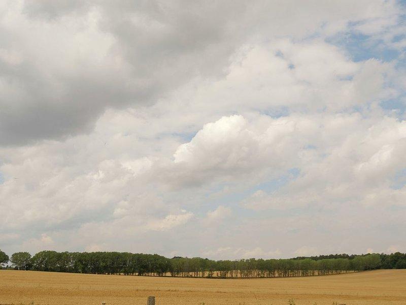 Arredores Imediatos [verão] (<1 km)