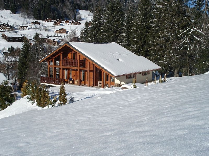 Sunny Chalet in Les Gets with Jacuzzi, vacation rental in Les Gets