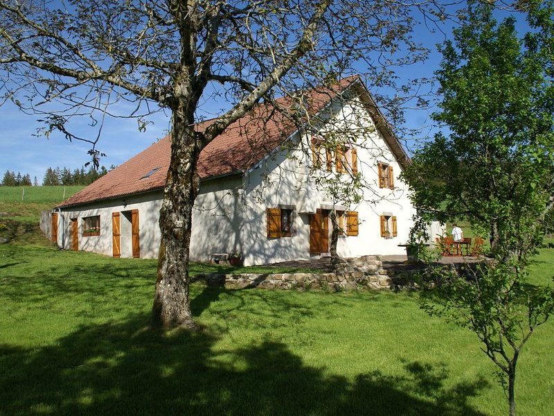 Spacious Holiday Home with Private Garden in Saint-Bresson, holiday rental in Ronchamp