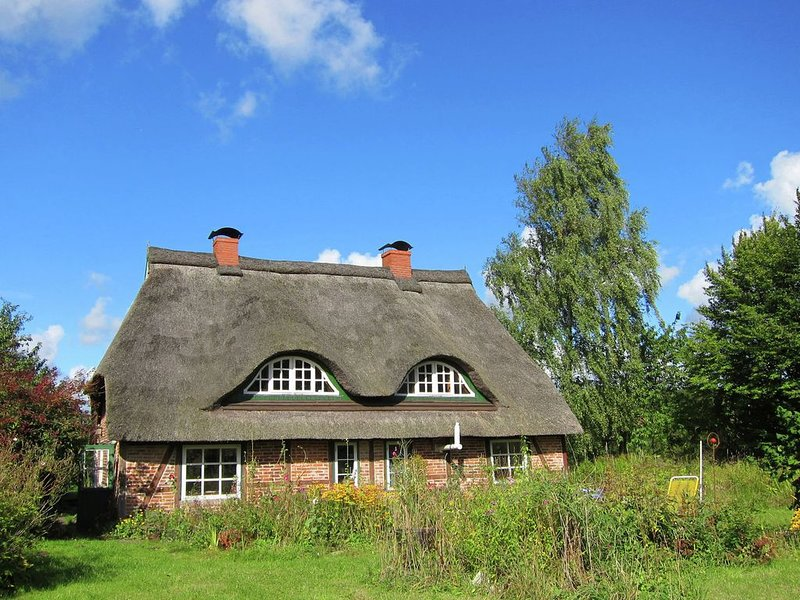 Big Holiday Home in Pronstorf Germany with Private Garden, holiday rental in Blunk