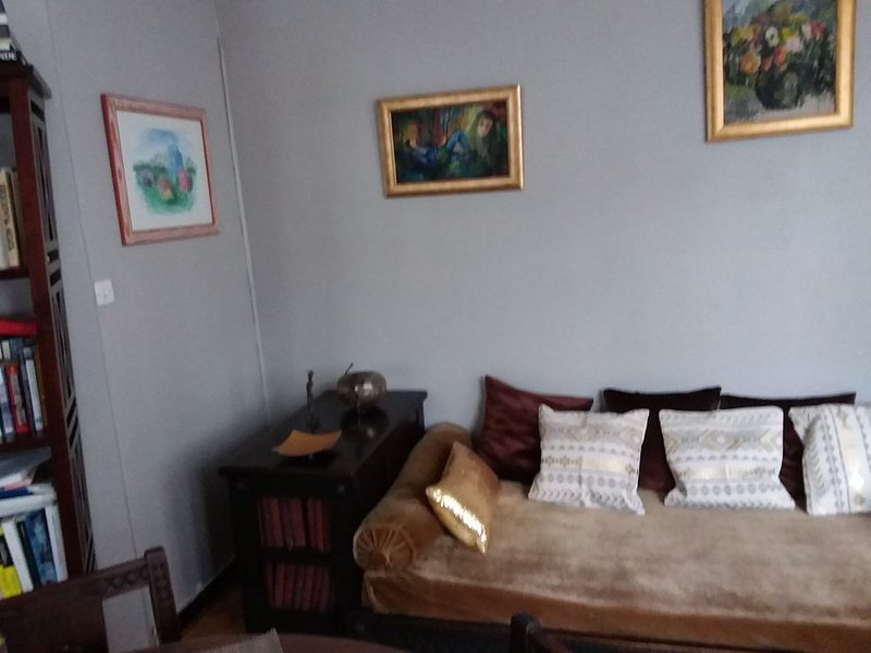 Cozy and comfortable apartment in the heart of the 7th arrondissement of Lyon, alquiler vacacional en Rhone