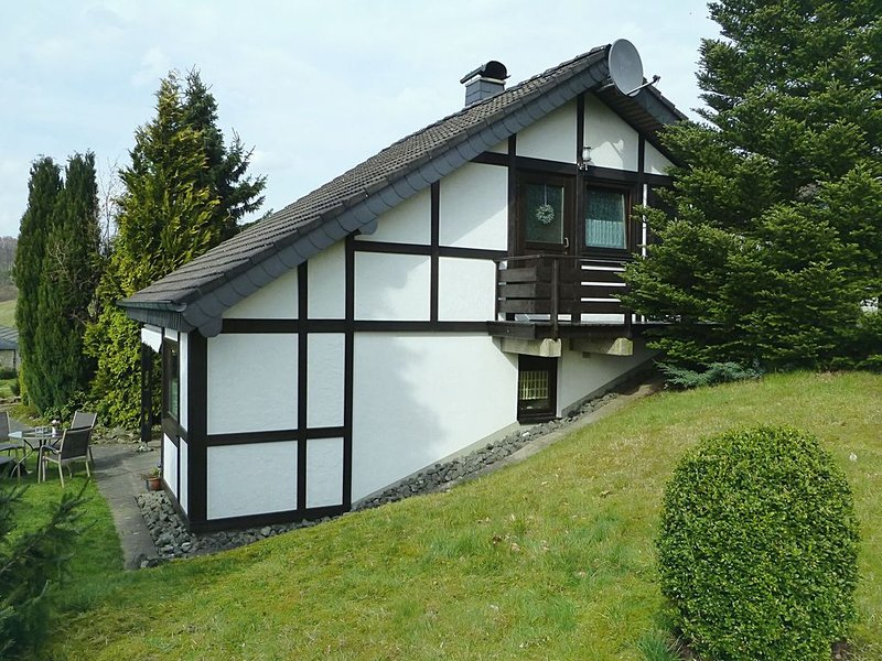 Beautiful Holiday Home in Mielinghausen near Ski Area, vacation rental in Meschede