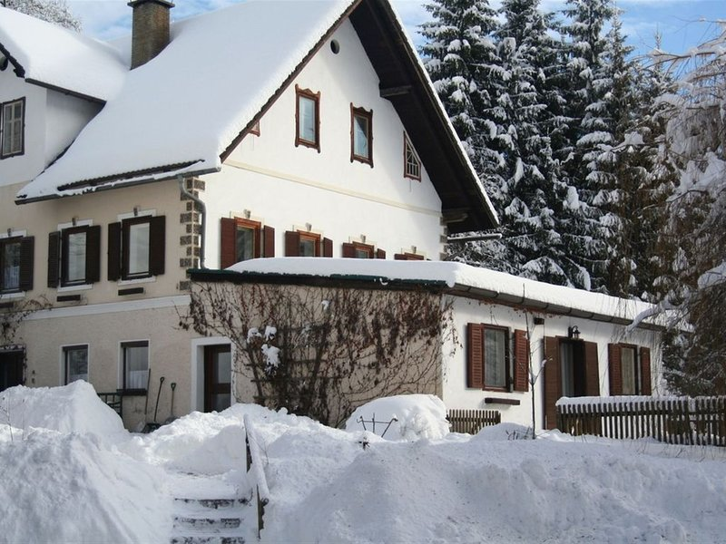 Huge Cottage in Hermagor-Pressegger See with Swimming Pool, holiday rental in Jenig