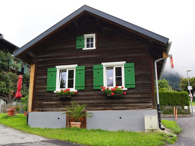 Cozy Holiday Home near Skiing Area in Sankt Gallenkirch, vacation rental in Sankt Gallenkirch