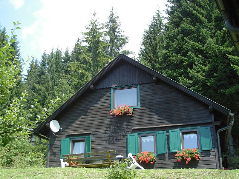 Comfortable Holiday Home with Sauna in Sankt Stefan, holiday rental in Elsenbrunn