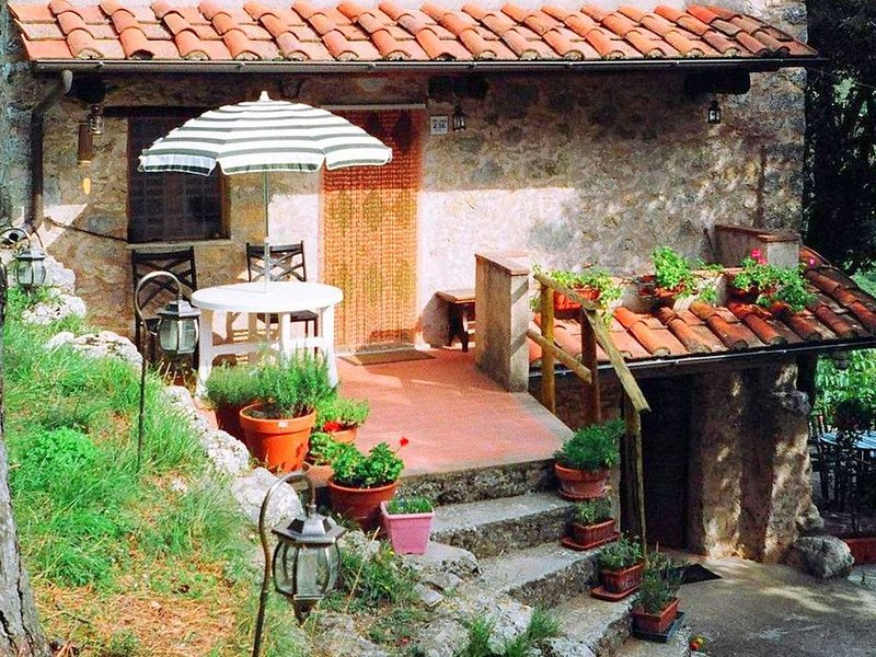 Dreamy Holiday Home in Casoli with Garden, vacation rental in Camaiore