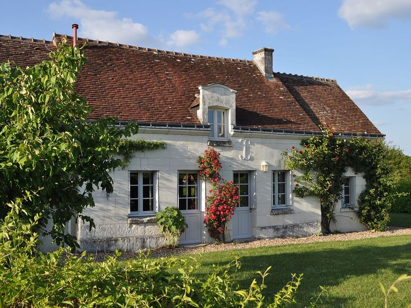 Character cottage with a swimming pool close to the Loire Chateaux., alquiler vacacional en Vou