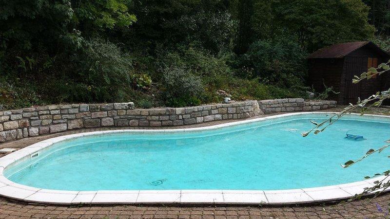Belle Villa sur les hauteurs de Salins les Bains, holiday rental in Salins-les-Bains