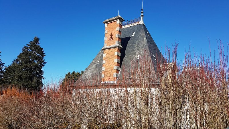 Chateau Igny offers you 3 different gites for a rural, quiet holiday: COURTYARD, holiday rental in Saint-Pierre-les-Bois