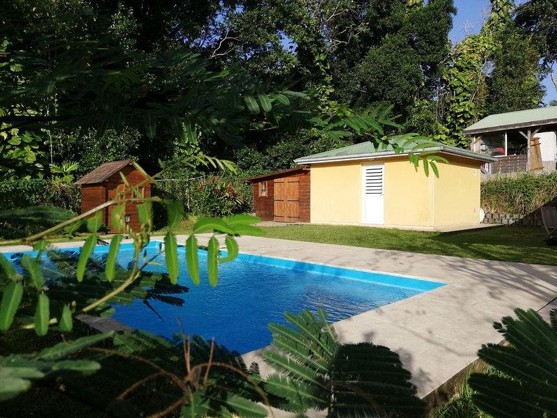 Bungalow à la campagne  avec piscine, holiday rental in Vernou