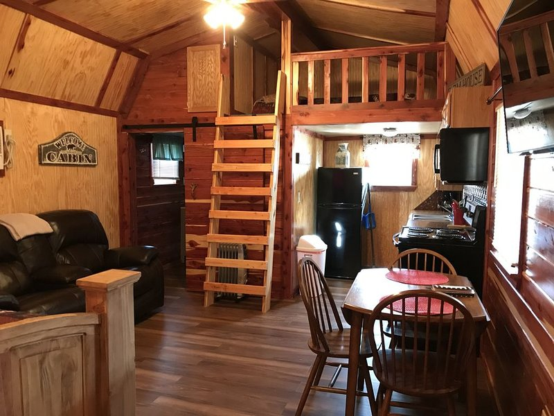 Lovely secluded cabin #1, holiday rental in Allen