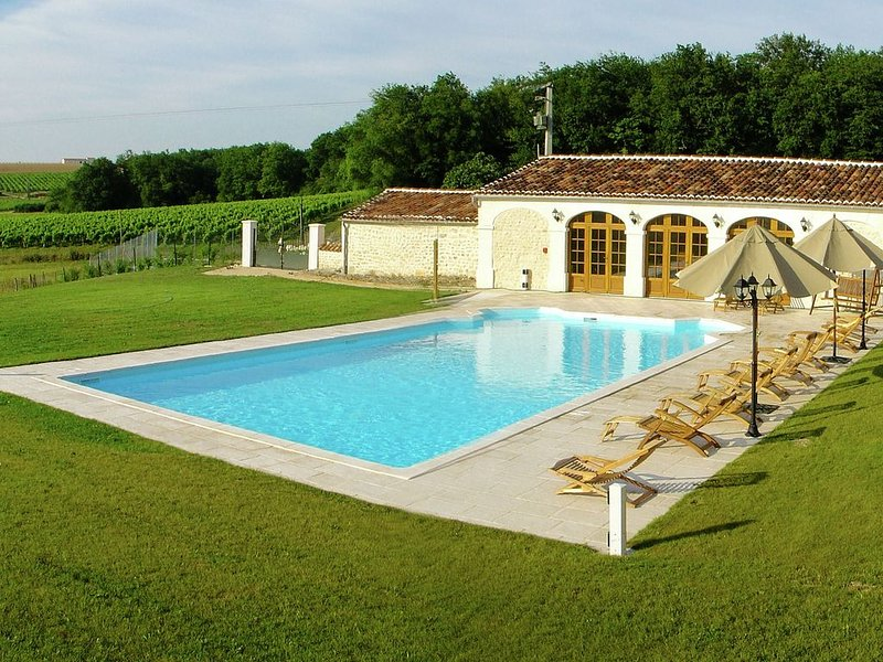 Luxurious Mansion in Saint-Preuil with Sauna, vacation rental in Saint-Preuil