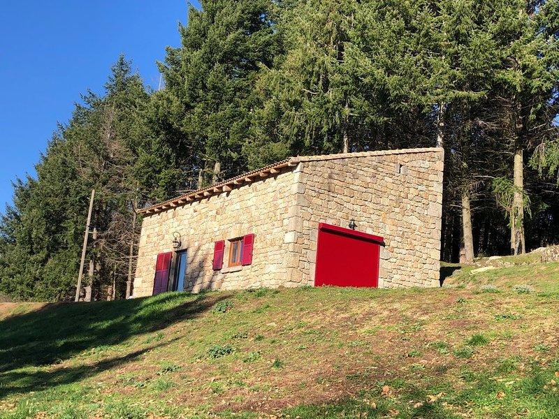 Demeure de caractère en pierre et bois dans une Bergerie nouvellement aménagée., casa vacanza a Gluiras