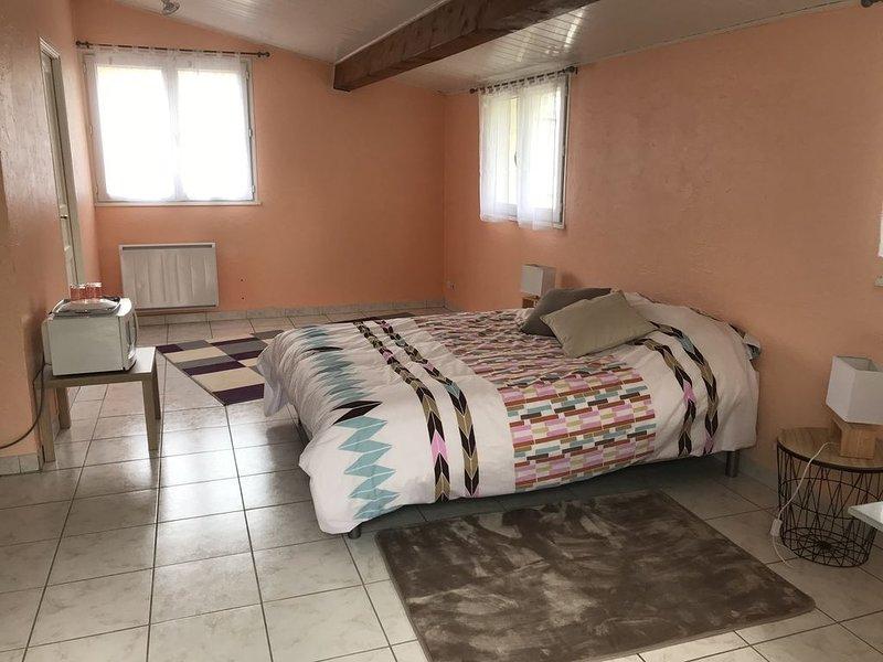 Chambre 25M2 et Salle de bain accès indépendant, holiday rental in Saint-Jean-d'Illac