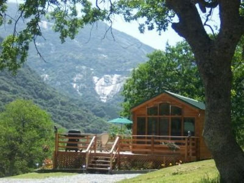 R&R IN A COZY SECLUDED CABIN!, alquiler de vacaciones en Three Rivers