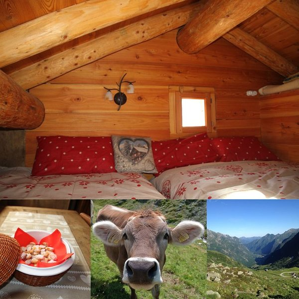 Baita 2000 verdi pascoli Alagna CIR002002CNI00014, holiday rental in Fornarelli