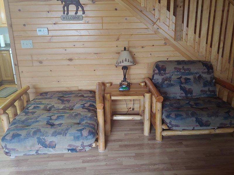 3 BEDROOM VILLA / CABIN 1400sq, holiday rental in Tomah