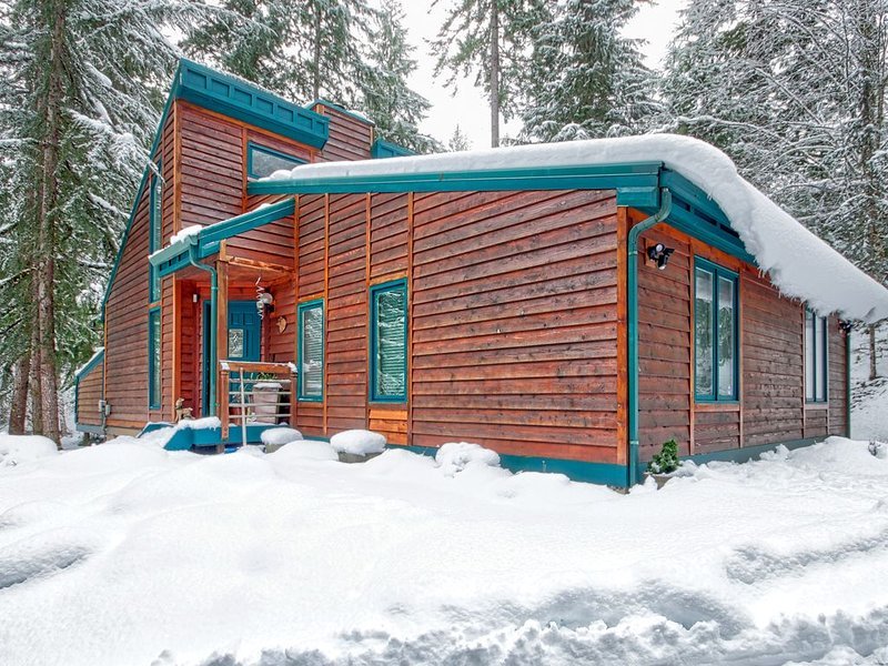 Alpinwald 'Alpine Forest'- Hot tub, BBQ, outdoor entertainment area, fire pit, holiday rental in Packwood