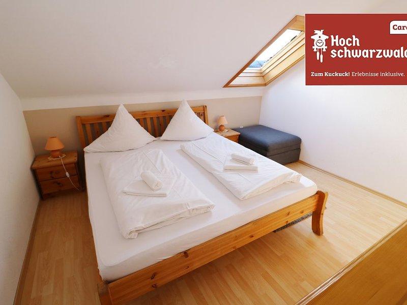 Ferienwohnung/App. für 6 Gäste mit 60m² in Feldberg (Schwarzwald) (124665), casa vacanza a Saig