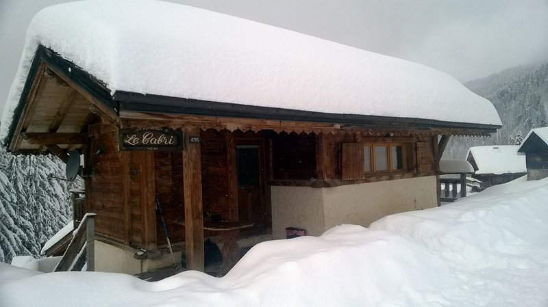 «Le Cabri», Chalet sur les pistes, holiday rental in Montriond