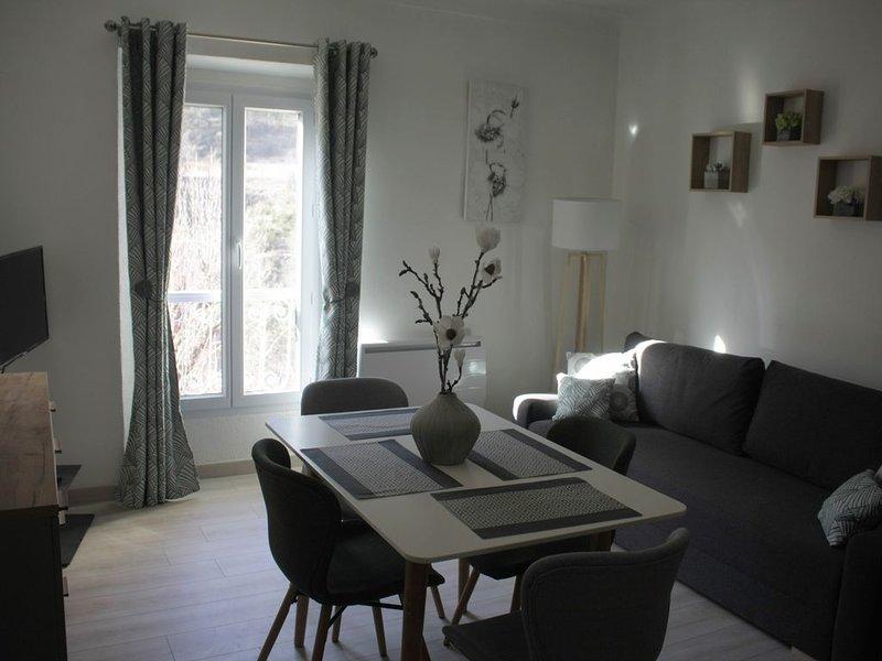 Charmant appt F2 tout confort avec parking privé, au calme, face à la rivière., vacation rental in Saint Andre Les Alpes