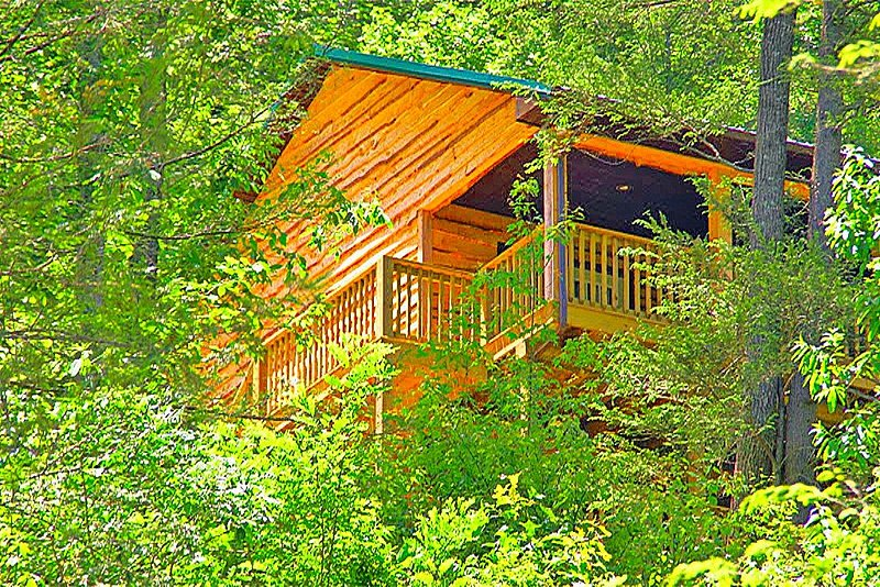 Secluded Mountain Cabin on a Large Estate with Water Fall, Hiking Trails & Creek, alquiler vacacional en Saint Paul