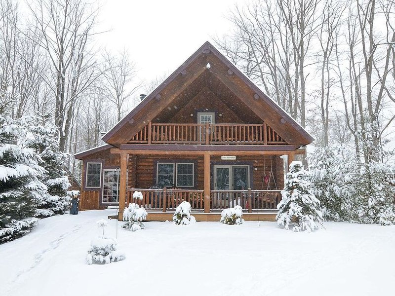 Cozy Cabin w/Indoor Hot Tub, 2 Wood Fireplaces, Foosball Table, & Central A/C!, holiday rental in Mount Storm