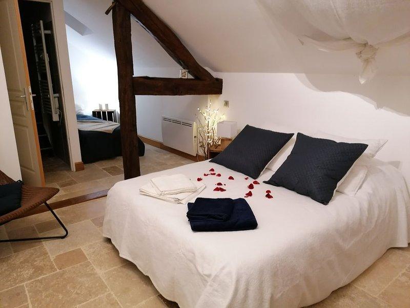 Chambres d'hôtes à la Spiruline du Domaine de la Courteloire, vacation rental in Aisne