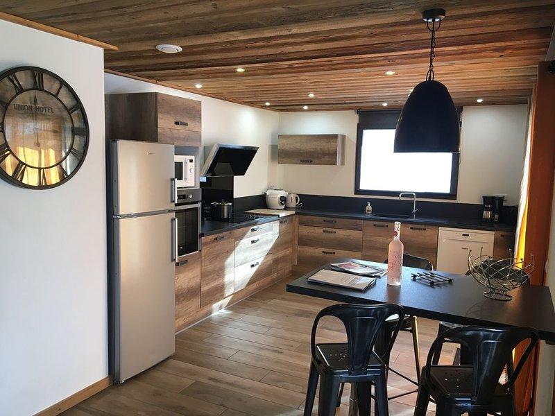 Grand appartement près des pistes - Les Ménuires, holiday rental in Levassaix