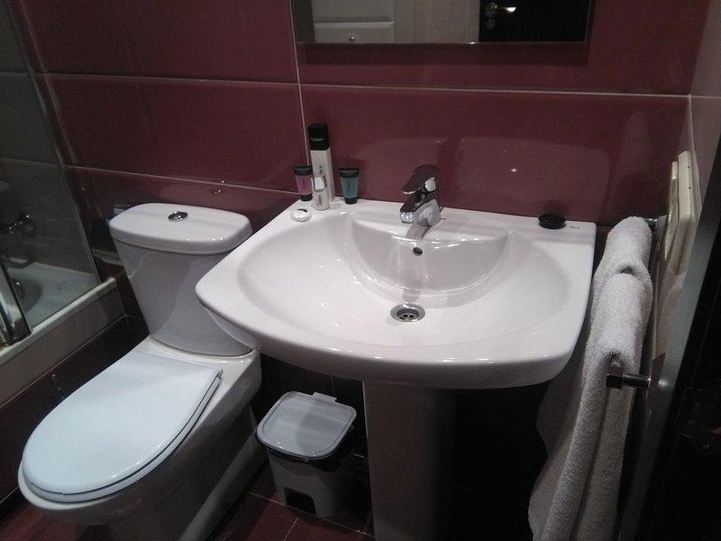Departamento completo de 1 habitación (806), holiday rental in Banos de Valdearados