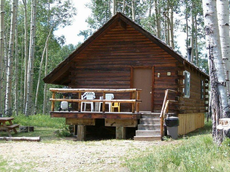 Wolf Den Cabin is cozy and rustic that overlooks the beautiful aspens trees., holiday rental in Rico