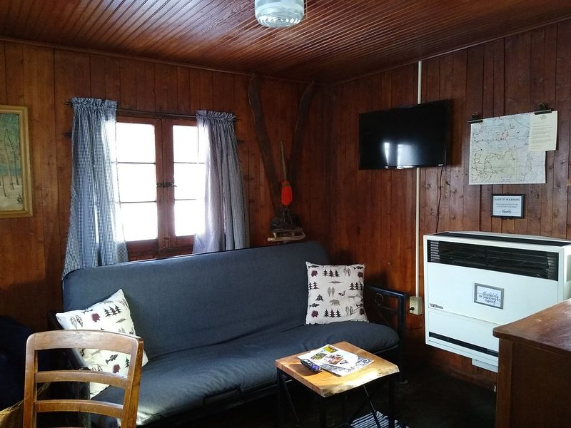 Mackinaw Timbers - Cabin #10 - Pet Friendly, alquiler de vacaciones en Lake City