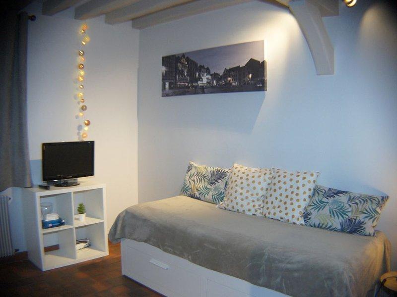 Studio 'la grenouillette' dans cottage proche Rouen, location de vacances à Poses