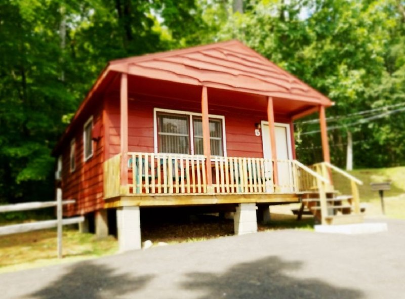The Gold Eagle Cabin 5, vacation rental in Lake George