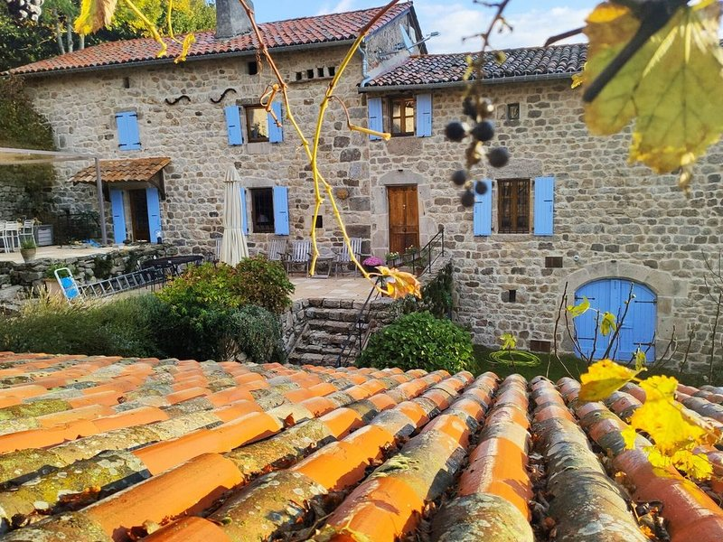 Beautifully restored house on a large property with a private swimming pool, holiday rental in Silhac