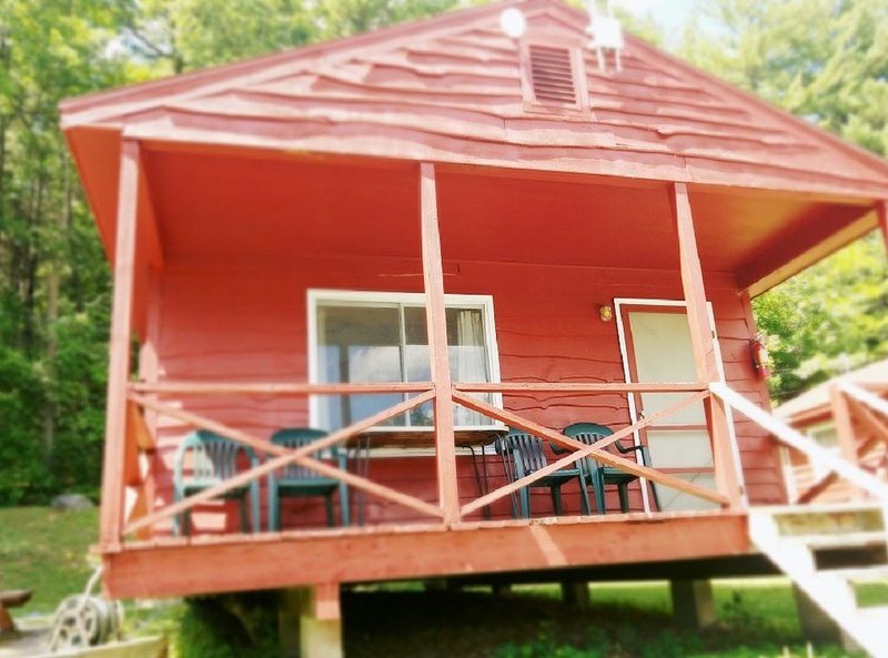 The Gold Eagle Cabin 11, holiday rental in Lake George