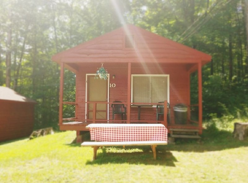 The Gold Eagle Cabin 10, holiday rental in Lake George