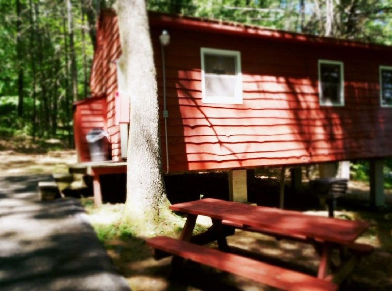 The Gold Eagle Cabin 15, holiday rental in Lake George