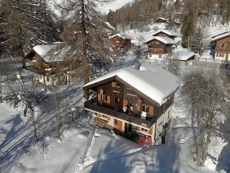Ruim 7-persoons chalet met 4 slaapkamers in gevarieerd skigebied Bellwald-Wallis, location de vacances à Bellwald