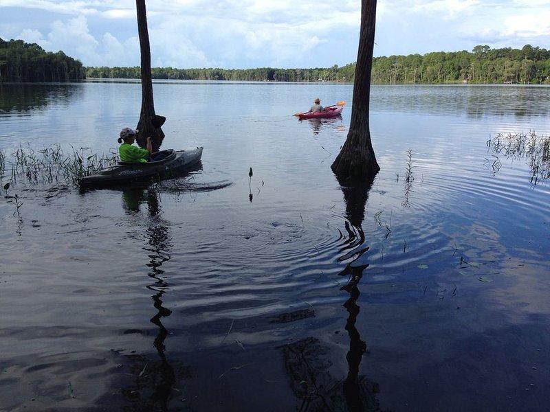 Relax on Lake Ellen- free use of kayaks-Snowbird's Dream, alquiler vacacional en Panacea
