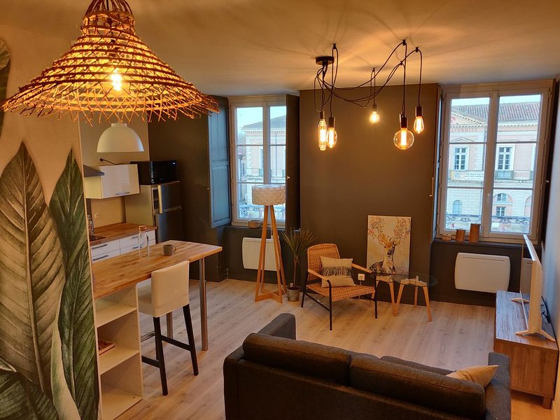 Joli appartement en centre ville L'Isle-Jourdain, vacation rental in Giscaro