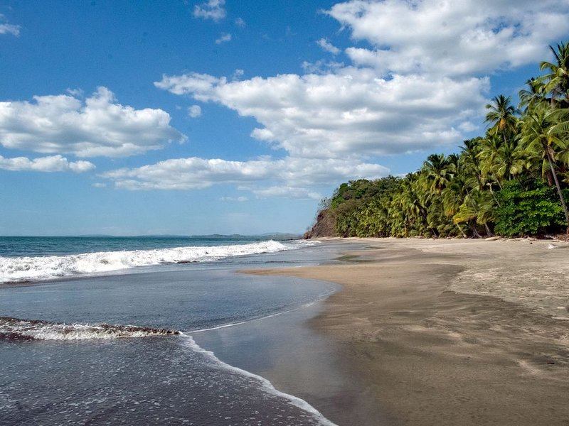 Oceanfront Sandy Beach, Pristine Jungle Setting. Private Guesthouse Studio., holiday rental in Veraguas Province