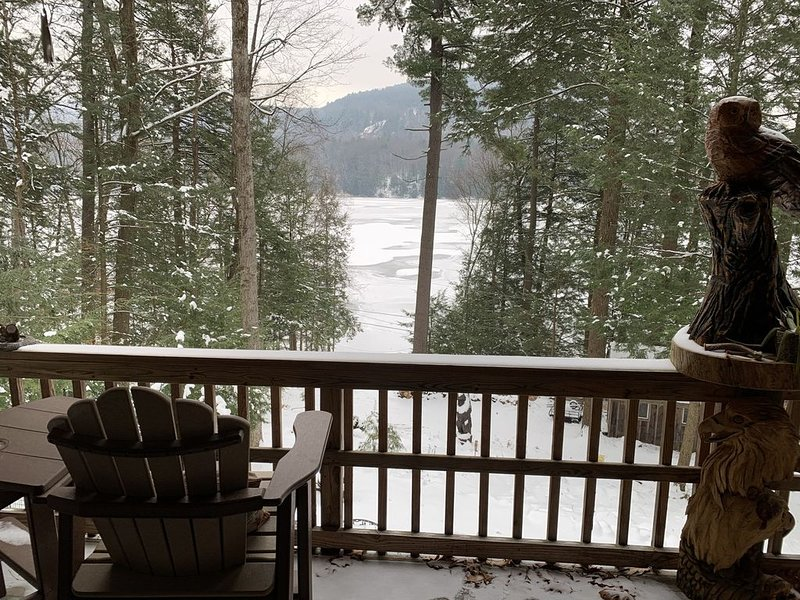 Copeland Pond Cabin retreat...20, location de vacances à Comstock