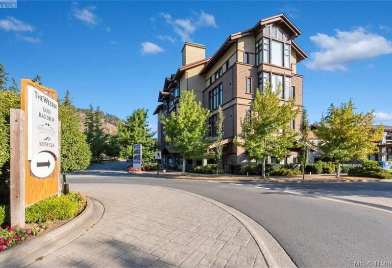 Bear Mountain Penthouse Loft, holiday rental in Langford